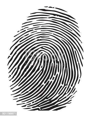 Vector of a finger print