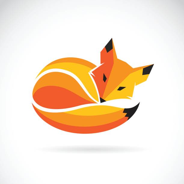 Vector of a fox design on a white background, Wild Animals vector art illustration