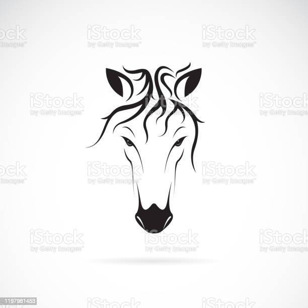 Vector of a horse head design on white background wild animals easy vector id1197981453?b=1&k=6&m=1197981453&s=612x612&h=vay6asntpq4devz0l8qyev k1ys2vwiymw46r  ihj4=