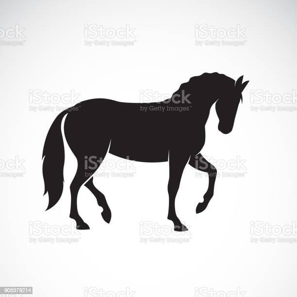 Vector of a horse isolated on white background wild animals easy vector id905379214?b=1&k=6&m=905379214&s=612x612&h=fy2dvuaitvmrfupqwp31ho4rks46xaz63jljpz4nzr8=