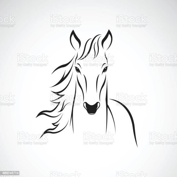 Vector of a horse on white background wild animals vector id689245714?b=1&k=6&m=689245714&s=612x612&h=hg9pcexya8u9l4xlvtikm7gjitsloroqoj4fc8bflci=
