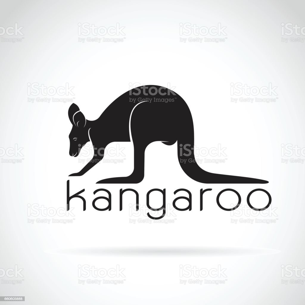 Vector of a kangaroo on white background. Wild Animals. royalty-free vector of a kangaroo on white background wild animals stock vector art & more images of abstract