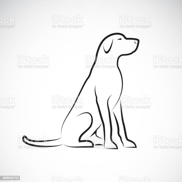 Vector of a labrador retriever dog on a white background pet animal vector id908909702?b=1&k=6&m=908909702&s=612x612&h=yyha1qwenm wlftyxxeiu5xt5txp6artuxgho ddixu=