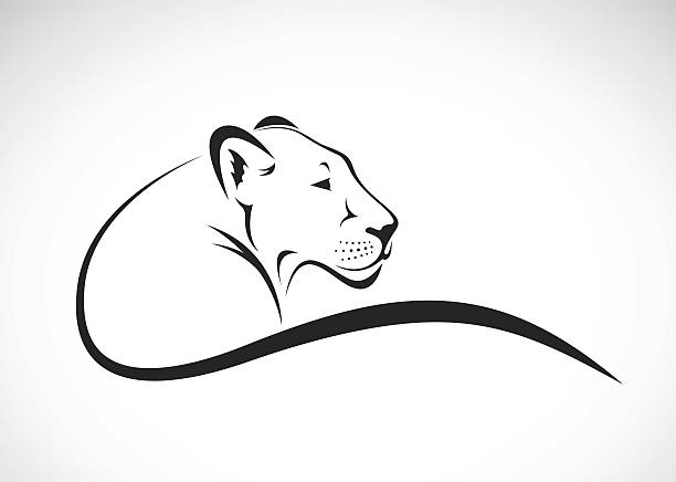 vector of a lion female design on white background. - 動物のタトゥー点のイラスト素材/クリップアート素材/マンガ素材/アイコン素材