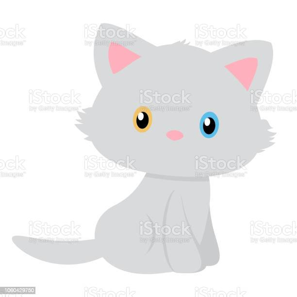 Vector of a simple and pretty gray cat with different colored eyes vector id1060429750?b=1&k=6&m=1060429750&s=612x612&h=o7wxgvi dg ai0qbeh3gppjjsqog5vg8xd6shvn e0e=