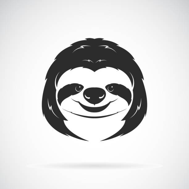 Vector of a sloth head design on white background. Wild Animals. Vector illustration. vector art illustration