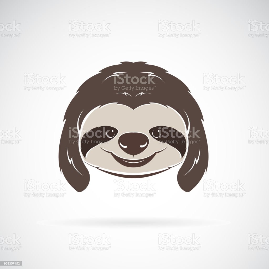 Vector of a sloth head on white background. Wild Animals. Vector illustration. Easy editable layered vector illustration. vector art illustration