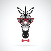 Vector of a zebra wearing sunglasses on white background. Animal fashion.
