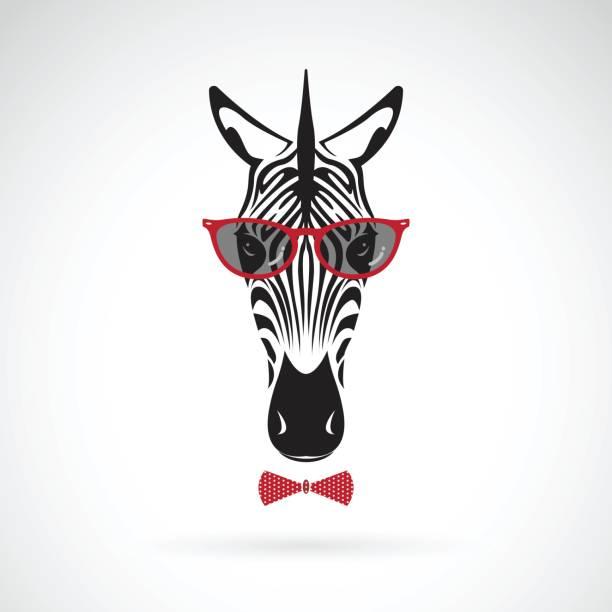 vektor der ein zebra sonnenbrille auf weißem hintergrund. tierische mode. - zebras stock-grafiken, -clipart, -cartoons und -symbole