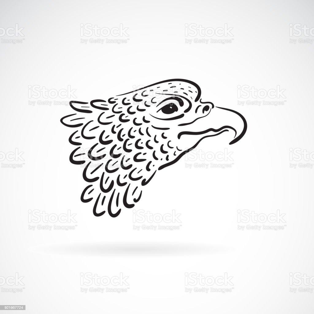 Ilustración de Vector De Una Cabeza De águila Sobre Fondo Blanco ...