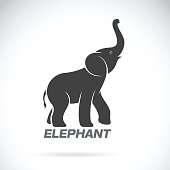 Vector of an elephant design on a white background.