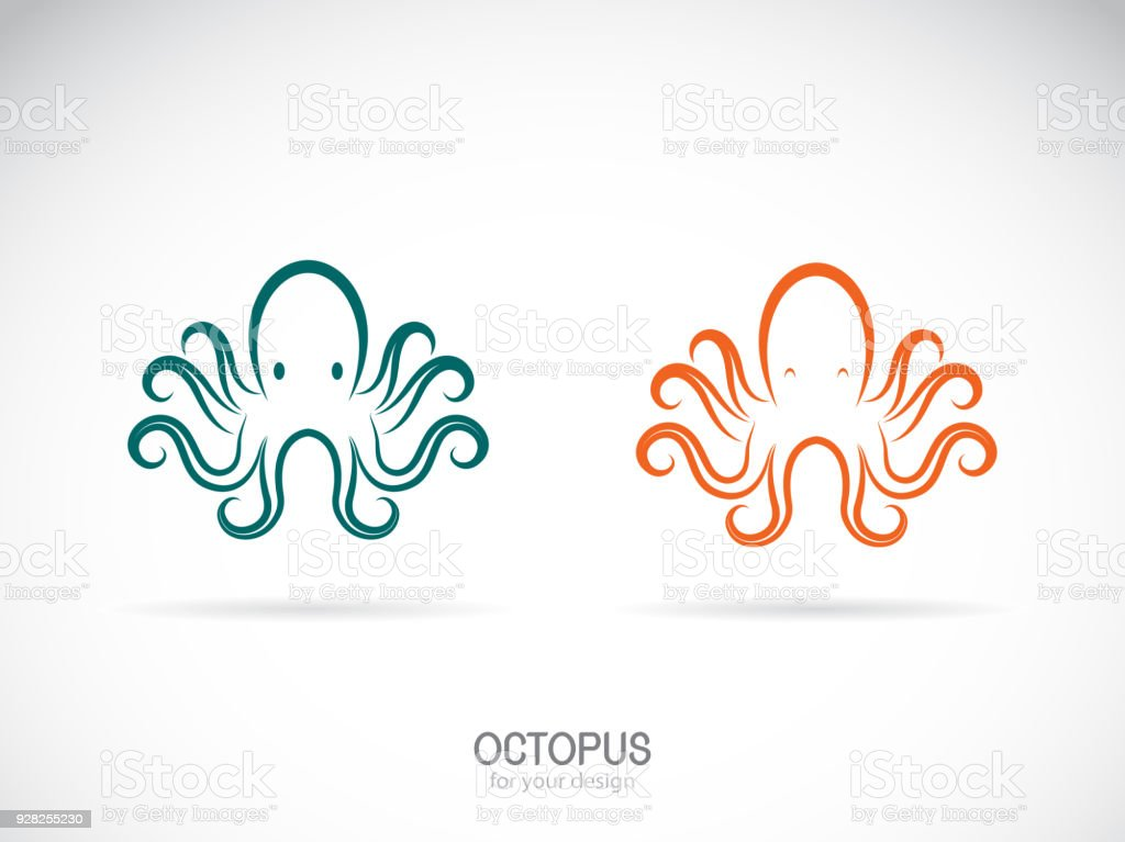 Vector of an octopus design on a white background. Aquatic animals. Easy editable layered vector illustration. vector art illustration