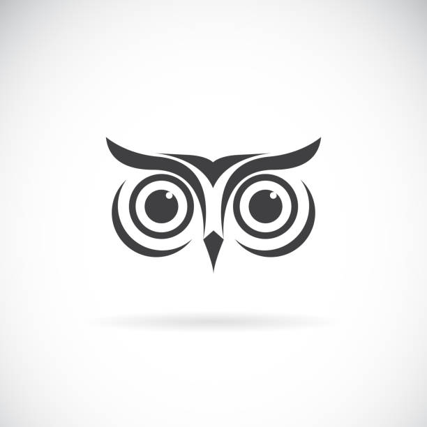 vector of an owl face design on white background. bird symbol. wild animals. easy editable layered vector illustration. - sowa stock illustrations