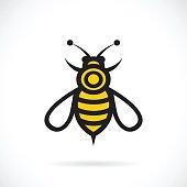 Vector of bee design.