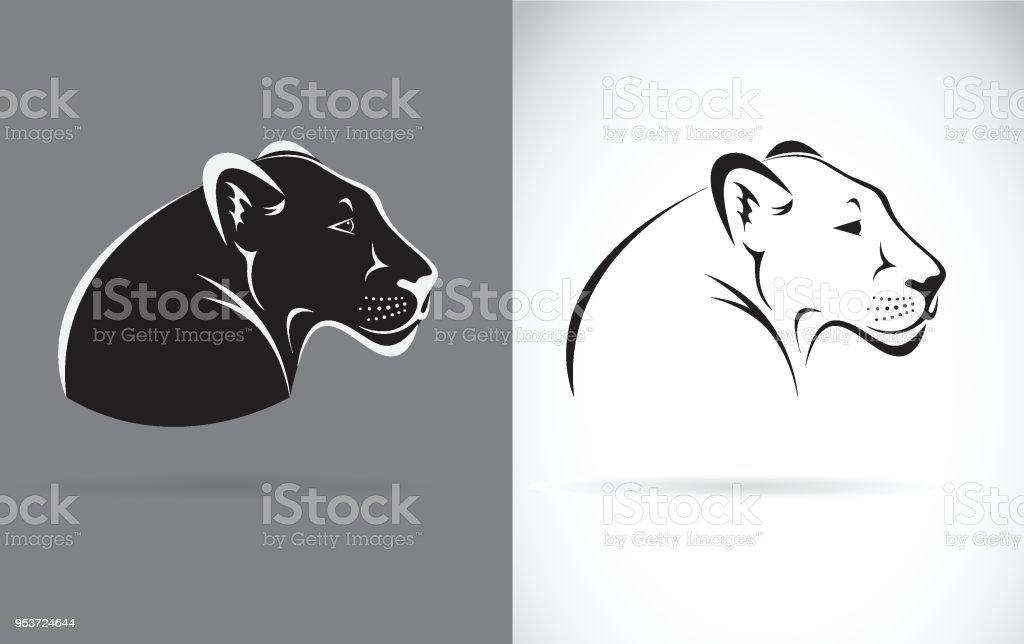 Ilustración de Vector De Pantera Negra En Fondo Blanco Y Fondo Gris ...