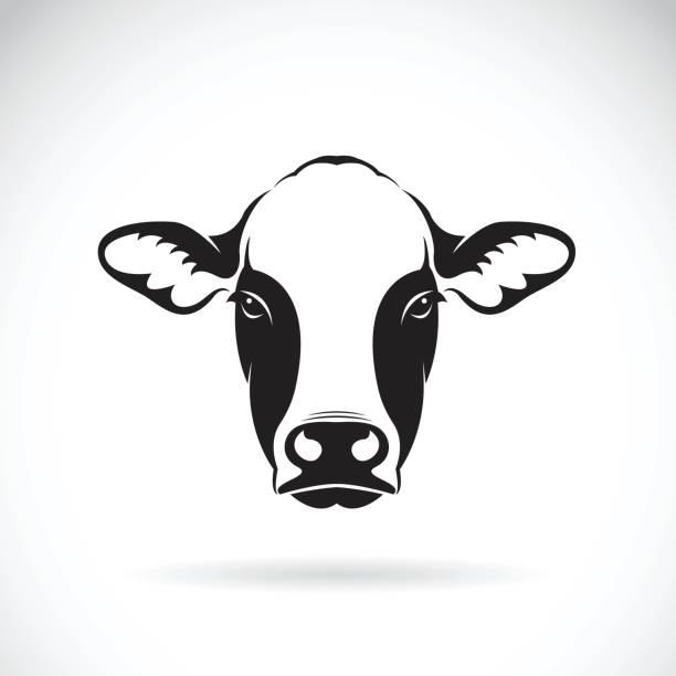 Best Farmer Portrait Illustrations, Royalty-Free Vector
