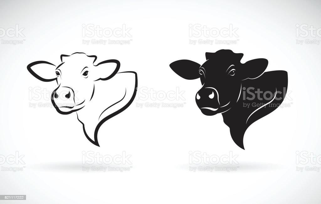 Vecteur de design tête de vache sur fond blanc. Animaux de ferme. - Illustration vectorielle