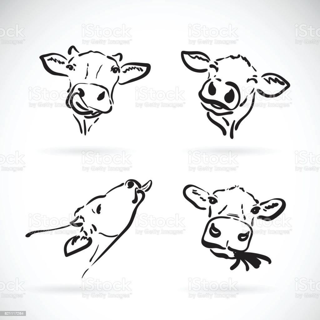Ilustración de Vector De Cabeza De Vaca Sobre Fondo Blanco Animal De ...
