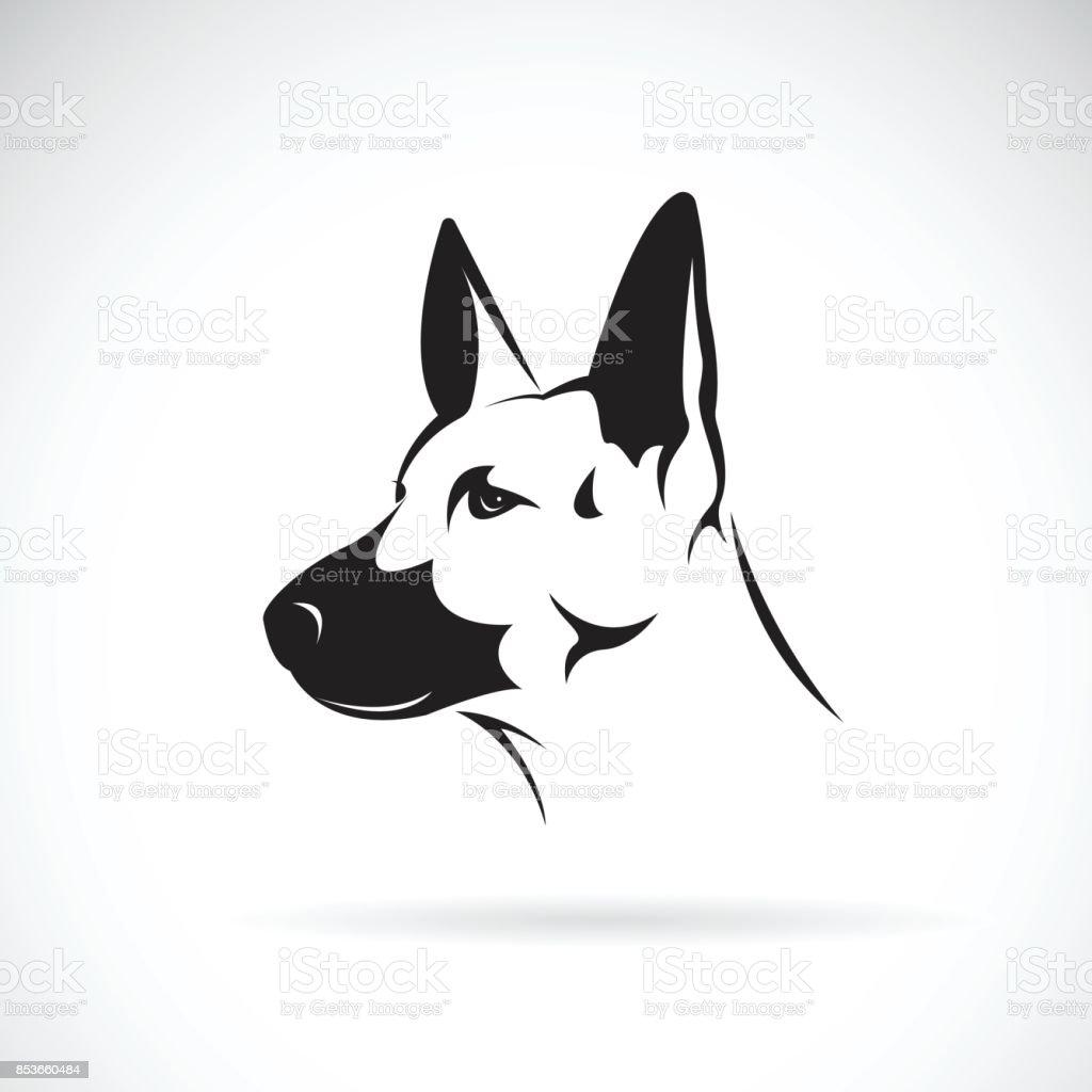 Vector of dog head (German shepherd) on white background, Pet. Animals. vector art illustration