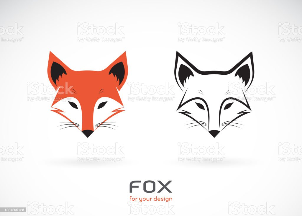 Vector Of Fox Head Design On White Background Wild Animals Fox Head Logos Or Icons Easy Editable Layered Vector Illustration Stock Illustration Download Image Now Istock