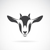 Vector of goat head design on a white background, Animal farm. Goat logo or icon. Easy editable layered vector illustration.
