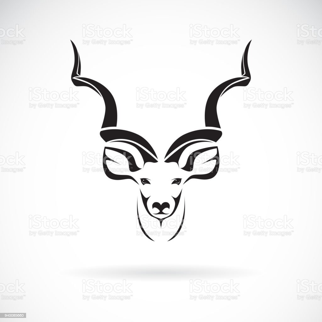 Vector Of Greater Kudu Head Design On White Background, Wild Animals. Easy  Editable Layered