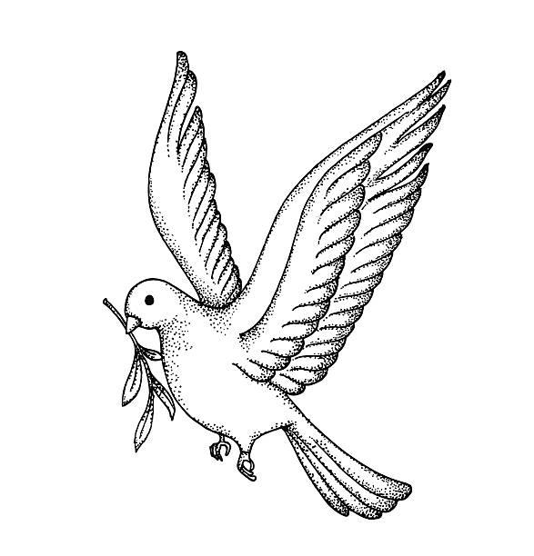 illustrazioni stock, clip art, cartoni animati e icone di tendenza di vettoriale della mano disegnare dove. simbolo della pace - ambientazione tranquilla