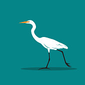 Vector of Heron or egret design (Ciconiiformes, Ardeidae) on blue background. Bird, Animals.