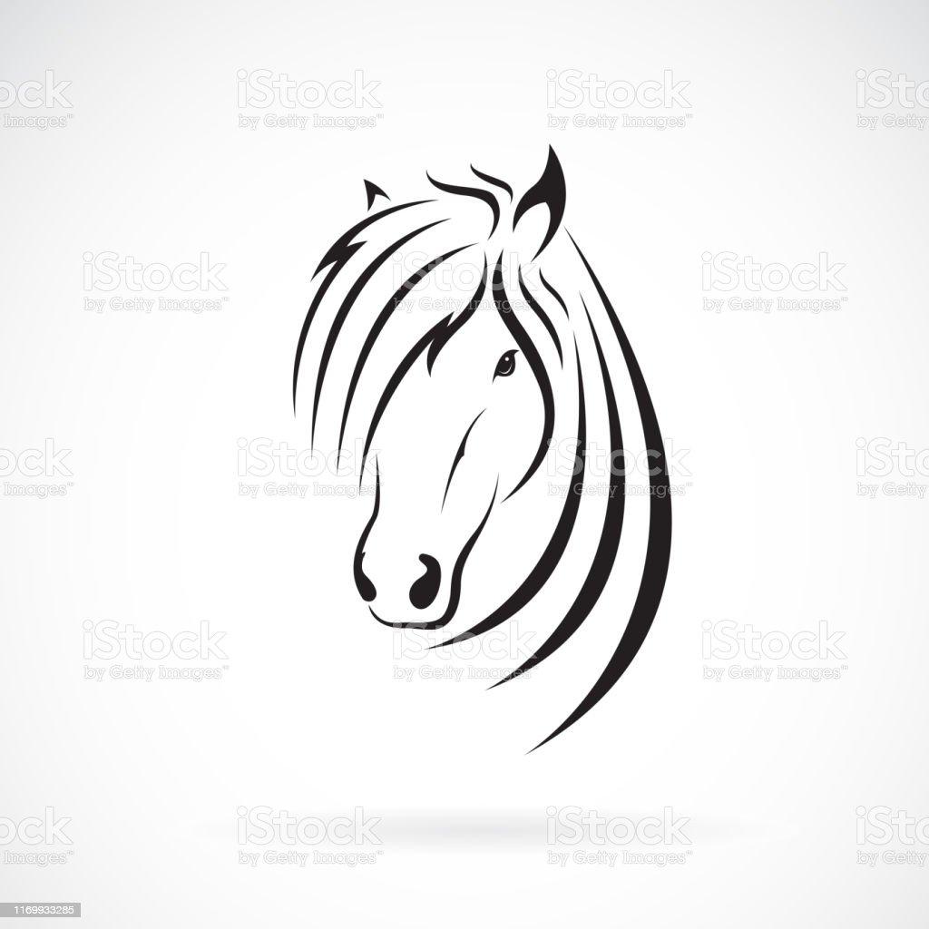 Vector of horse head design on a white background. Wild Animals....