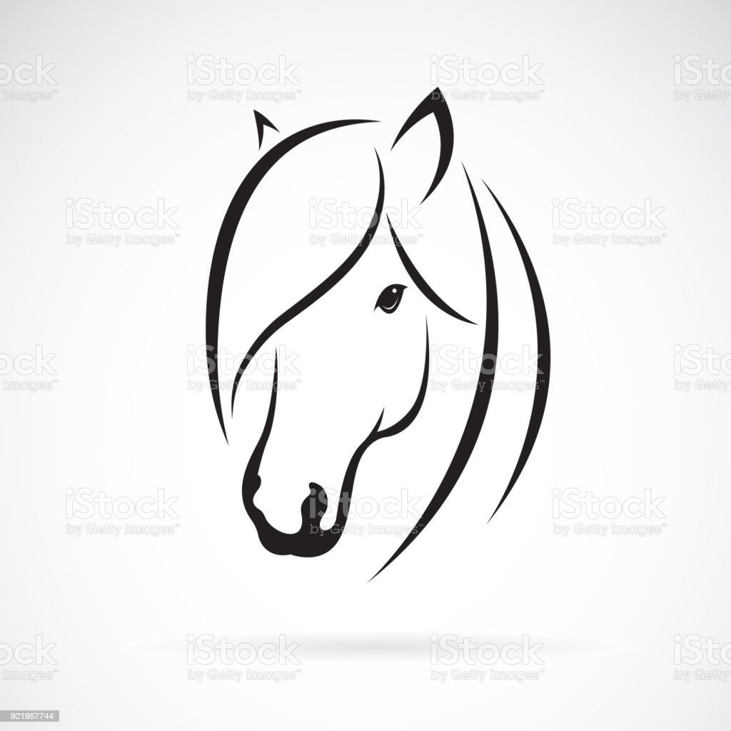 Vector Of Horse Head Design On White Background Animal Horse Symbol Easy Editable Layered Vector Illustration Stock Illustration Download Image Now Istock