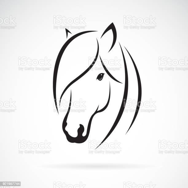 Vector of horse head design on white background animal horse symbol vector id921957744?b=1&k=6&m=921957744&s=612x612&h=lcvvvk mzlcrzqk8s2ttvwddpvty9pwqy4acdi8dcbm=