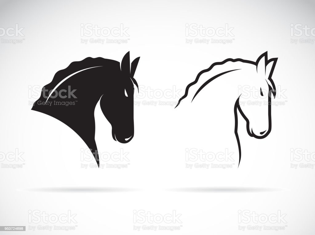 Vector Line Art Animals : Vector of horse head design on white background wild animals easy