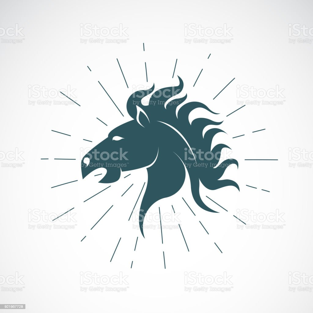 Vector of horse head on white background. Animal. Horse symbol....