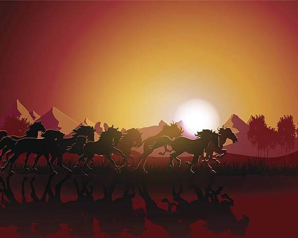 Vector of horse silhouette Horse silhouette on sunset background. animal stage stock illustrations