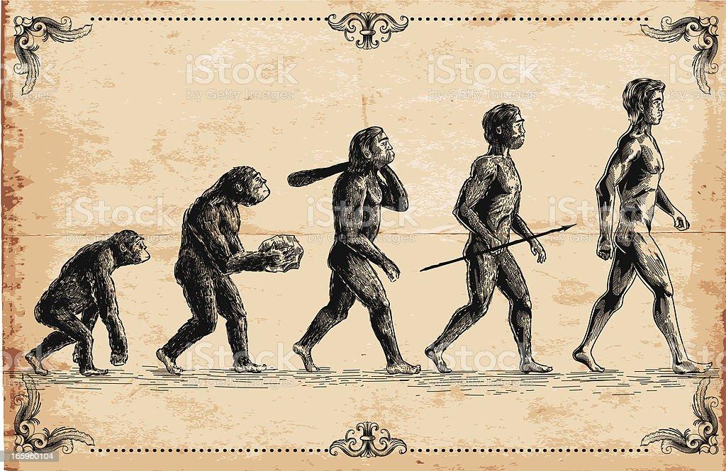 Vector of human evolution concept vector art illustration