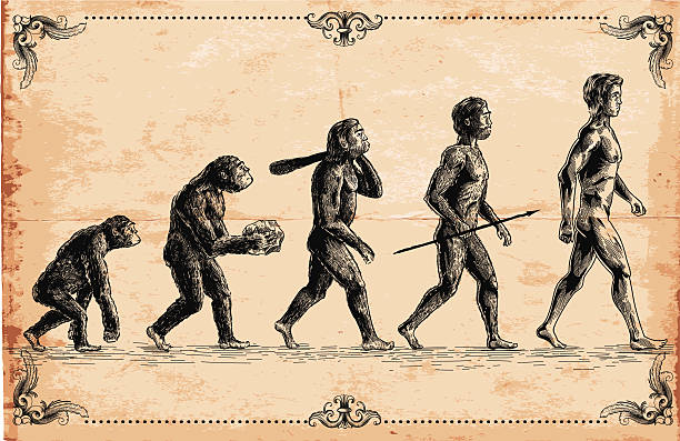vector of human evolution concept - vintage people stock illustrations, clip art, cartoons, & icons