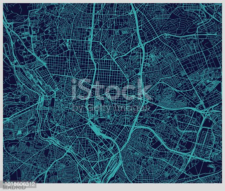 vector of madrid map pattern background