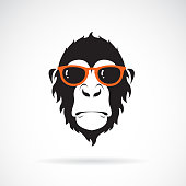 Vector of monkey head wearing glasses on white background. Wild Animals. Fashion. Easy editable layered vector illustration.