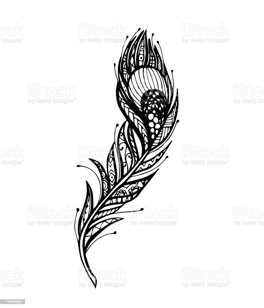 Vector Of Peacock Feather Stock Vector Art & More Images ...