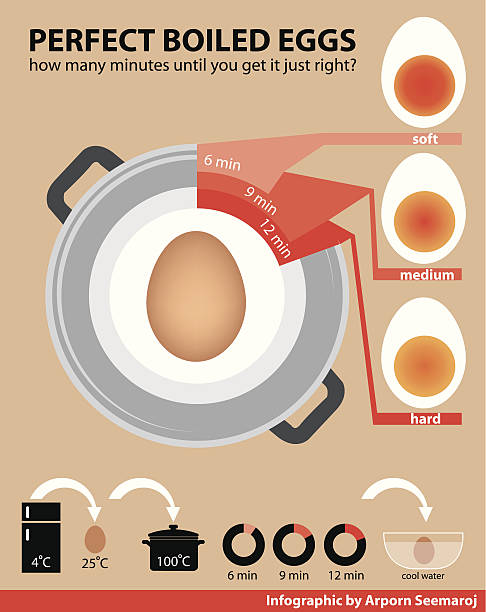 vector of perfect boiled eggs - busy restaurant kitchen stock illustrations