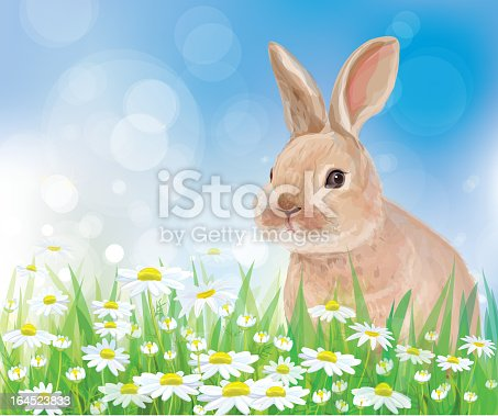 istock Vector of rabbit in flowers on sky background. 164523833
