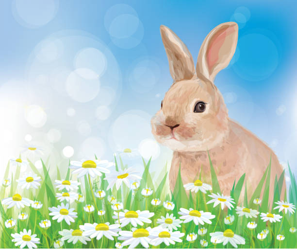Vector of rabbit in flowers on sky background. Background is my creative handdrawing and you can use it for spring, summer, kid's, Easter's design and etc, made in vector, Adobe Illustrator 10 EPS file, transparency and mesh effects used in file. animal stage stock illustrations