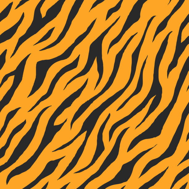 Vector of seamless animal print pattern Illustration of seamless animal print pattern texture background. Realistic stripe of tiger skin color. Vector animal captivity building stock illustrations