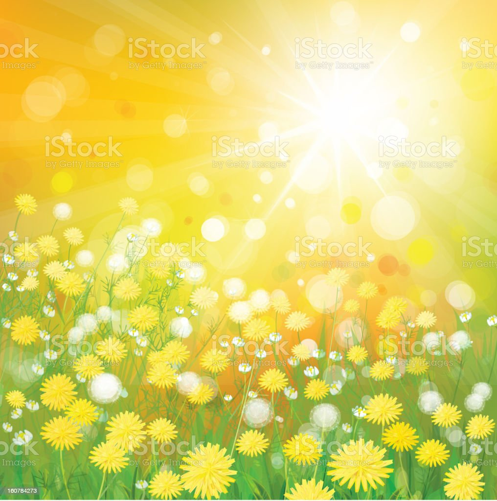 Vector of sky background with yellow dandelions. royalty-free stock vector art