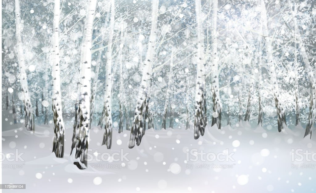 Vector of winter snowy landscape, birch forest. royalty-free stock vector art