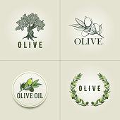 Vector olive design template set.