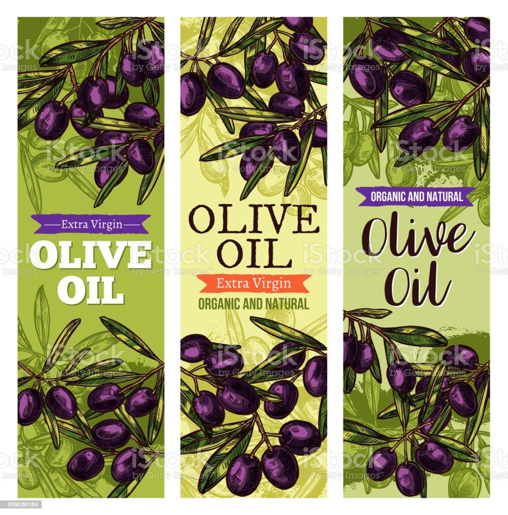 Vector olives bunch sketch banners for olive oil vector art illustration