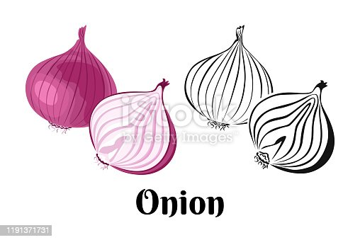 istock Vector onion vegetable. Whole red onion and slice isolated on a white background. Color illustration and black and white outline. Food image in cartoon simple flat style. 1191371731