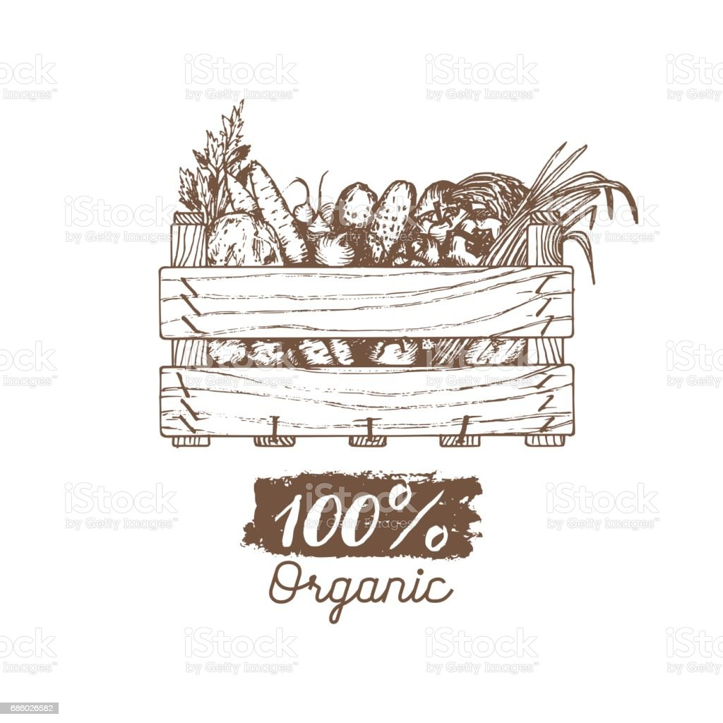 Vector organic vegetables label. Farm eco products illustration. Hand sketched wooden box with greens. vector art illustration