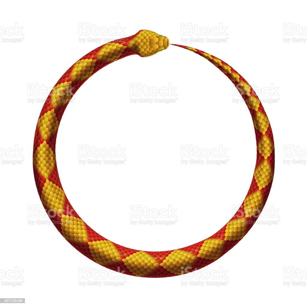 ベクトル ウロボロス記号。蛇の尾をかみます。 ベクターアートイラスト